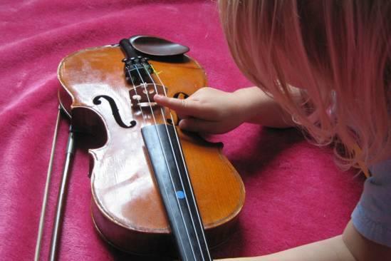 Little Bird music violin
